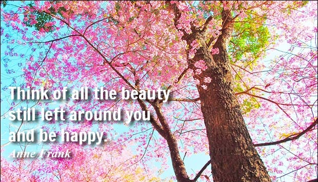 Think of all the beauty still left around you and be happy. - Anne Frank