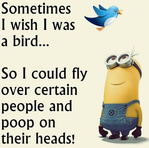 Sometimes I wish I was a bird. So I could fly over certain people and poop on their heads.