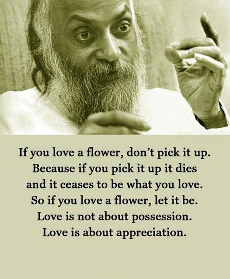 A5 osho quotes - If you love a flower, don't pick it up. Because if you pick it up it dies and it ceases to be what you love. So if you love a flower, let it be. Love is not about possession. Love is about appreciation.