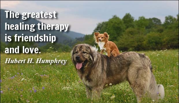 The greatest healing therapy is friendship and love. Hubert H. Humphrey