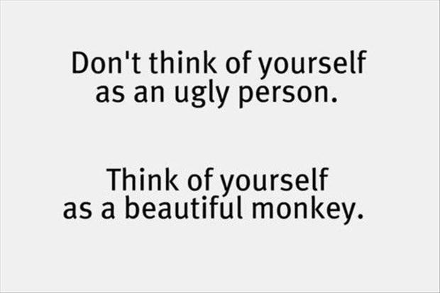 Funny quotes - Don't think of yourself as an ugly person. Think of yourself as a beautiful monkey.