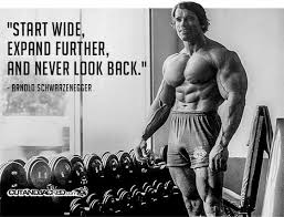 arnold schwarzenegger quotes - Start wide, expand further and never look back.