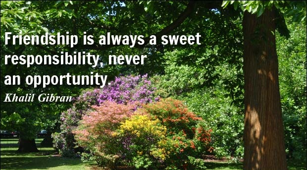 Responsibility Quotes A19. Friendship is always a sweet responsibility, never an opportunity.